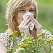 аллергический ринит (насморк) при попадании в организм аллергена (пыльцы цветов)