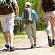 семья идет в лес без защитной одежды от энцефалитных клещей