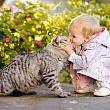 ребенок контактирует с животным с риском заразиться зоонозом