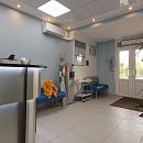 Medivel, стоматологическая клиника