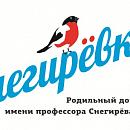 Роддом №6 им. проф. В.Ф.Снегирева (специализированный)