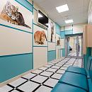 MAJOR CLINIC, многопрофильный медицинский центр